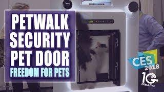 The Petwalk Pet Door Is A Smart Door For Your Pets and More