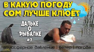В какую погоду сом лучше клюёт давление ветер Дальке о рыбалке 7