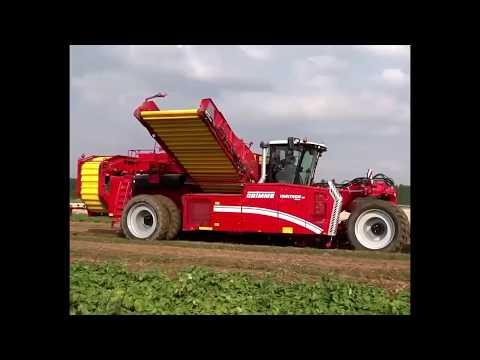 Вопрос: Как выращивают картофель на западе от РФ?
