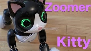 Zoomer Kitty Review,  The Interactive Pet Kitty Cat From Spinmaster