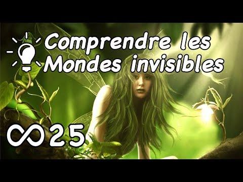 Comprendre les Mondes invisibles - Jérôme RodAnge et François Breton