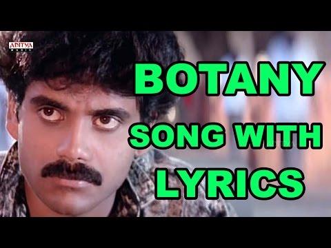 Botany Patamundi Full Song With Lyrics - Shiva Songs - Nagarjuna, Amala, RGV, Ilayaraja