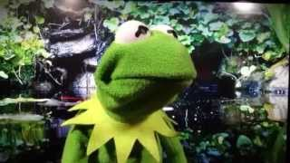 Hi Ho And Happy Birthday Laura Martini, Your Friend Kermit