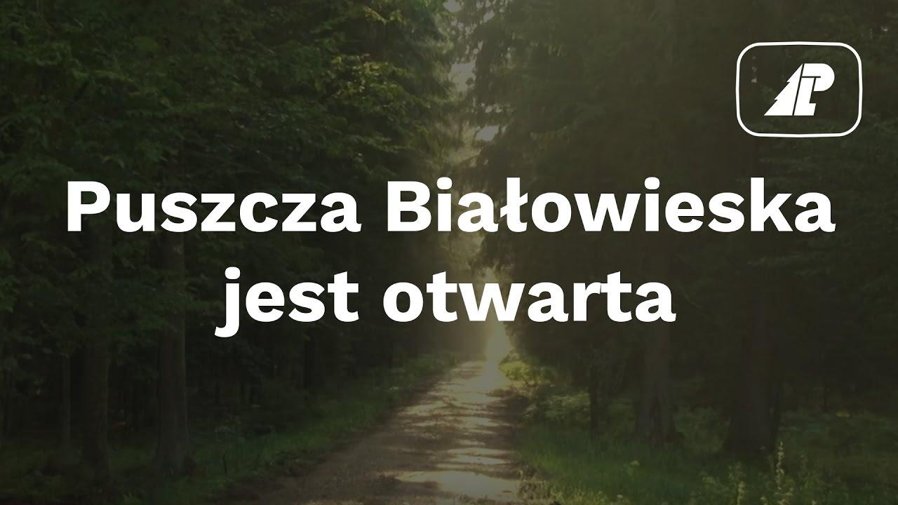 Puszcza Białowieska jest otwarta