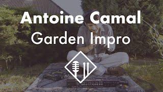 Antoine Camal - Garden Impro #1