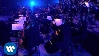 Miguel Bosé - Muro (en directo-Mexico)