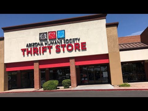 THRIFTING #4 - ARIZONA HUMANE SOCIETY THRIFT - MESA ARIZONA