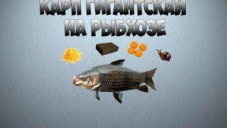 Русская рыбалка | Рыба и прочий улов