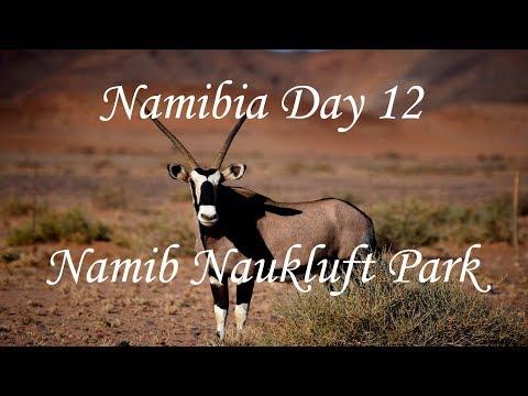 Namibia Travel Vlog Road Trip day 12 Sesriem to Duwisib Castle via the Namib Naukluft National Park