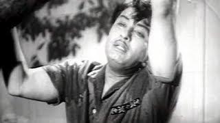 Thaayin Madiyil Tamil Song - MGR