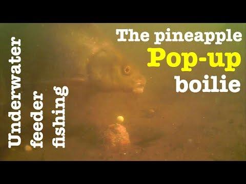 The Pineapple Pop-up - Underwater Feeder Fishing - Breamtime S2 E17