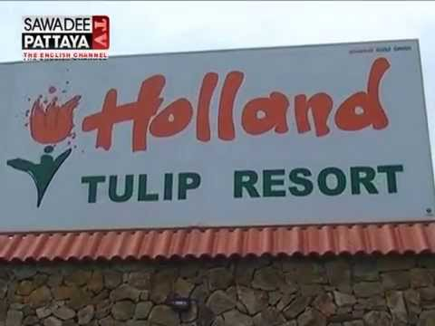 Places to See Holland Tulip Resort