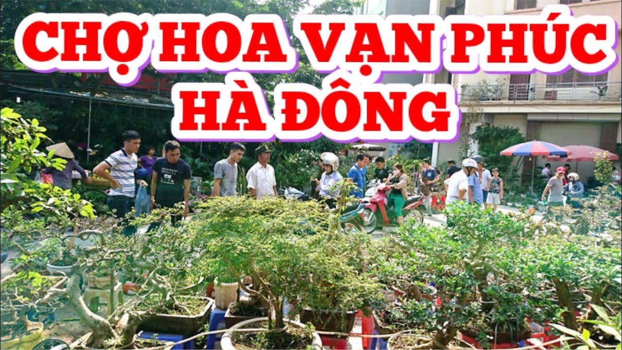 Chợ cây cảnh Vạn Phúc Hà Đông | BĐS Hà Nội