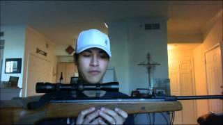 Why This Is The Best Pellet Gun Under $200!!