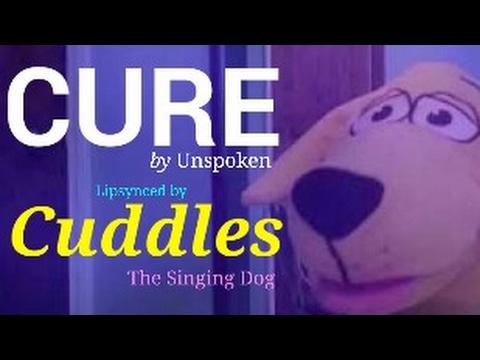 Unspoken - Cure