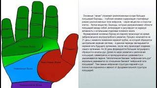 видео Двойная линия жизни: раздвоение на правой руке