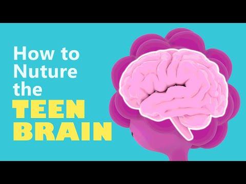 How to Nurture The Teen Brain