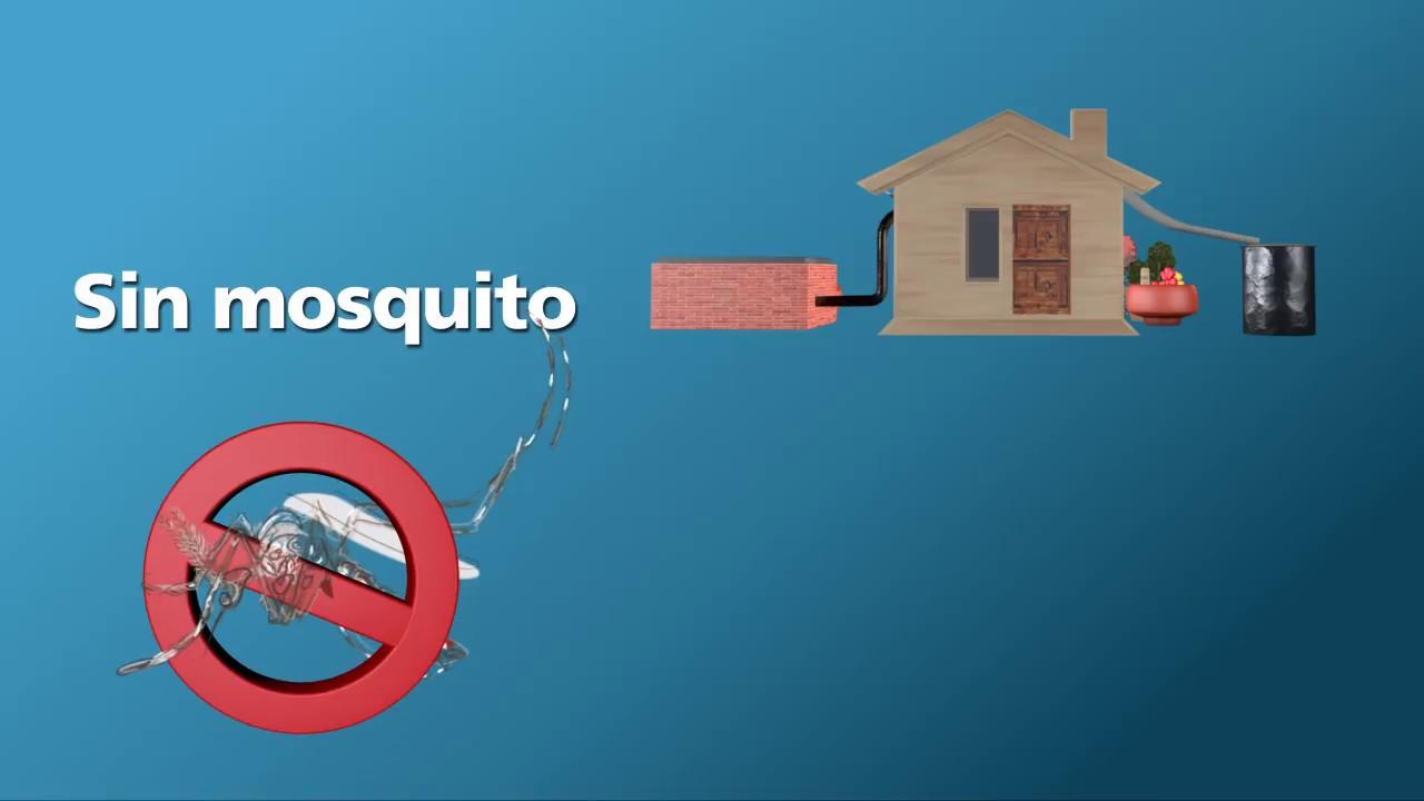 Zika c mo evitar los criaderos de mosquitos en tu patio - Como ahuyentar a los mosquitos ...