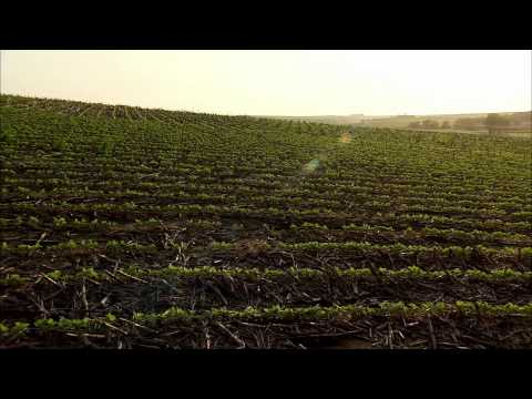 2013 Environmental Stewards - Bacon Hill Farm, Dodge, Nebraska