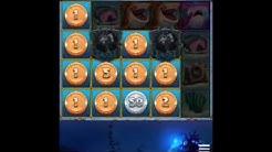 MEIN GRÖẞTR GEWINN AUF WILDZ | German | Casino