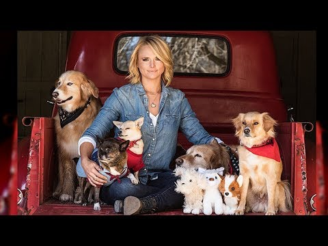 Miranda Lambert Helps Dog Who Gave Birth To Puppies Right After Hurricane Rescue