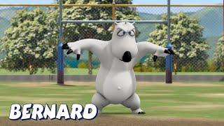 Бернард Медведь | Регби И многое другое | Мультфильмы для детей | Полные эпизоды