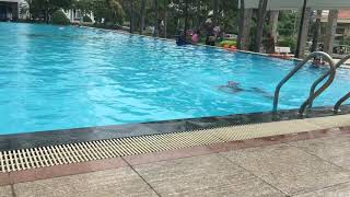 Dạy bơi ếch cấp tốc tại chung cư Hoàng Anh Gia lai quận 7 0909012430