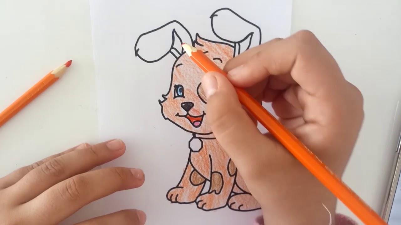 Yaramaz Kedilere Hayvan Boyama Oyunu Serisi Köpek Boyama Oyunu