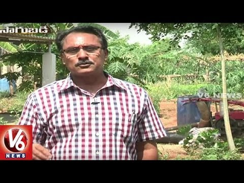Sagubadi : Success Stories Of Telangana State Organic Farmers | V6 News