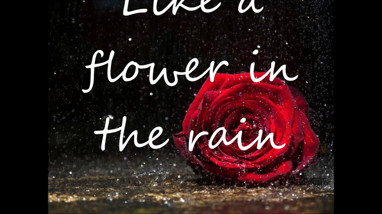 Flower in the Rain with lyrics - YouTube