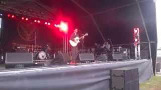 Jamie Lenman - Download 2014 (Full Set)