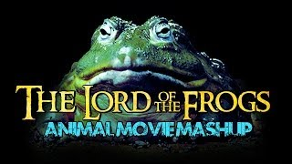 The Lord of The Frogs - Animal Movie Mashup