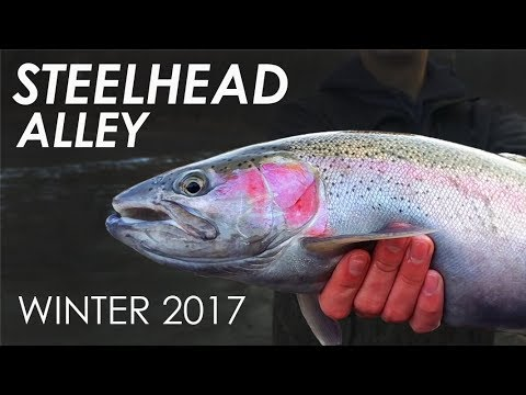 EPIC Ohio Steelhead Fishing! - Winter 2017