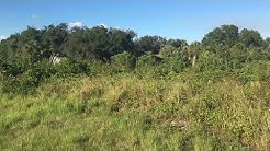 Land for Sale in Florida by Owner - Montura Ranch Estates