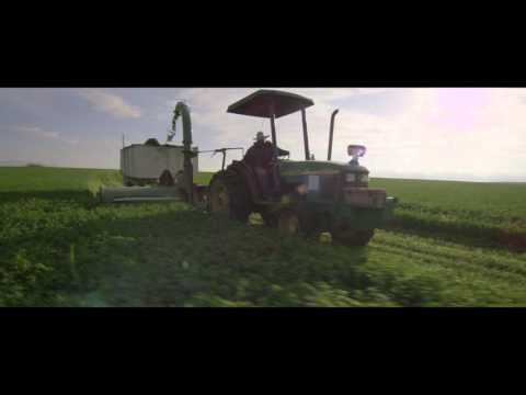 Organic Farming - From Seed to Supplement | Amway