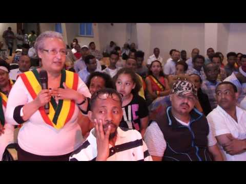 Patriotic Ginbot 7 Oslo meeting June 4 2016 part 3  Question and answer