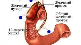 видео ХРОНИЧЕСКИЙ ХОЛЕЦИСТИТ