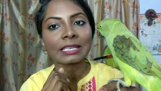 How to identify male and female indian ringneck parrot ? HOW TO TRAIN INDIAN RINGNECK PARROT TO TALK