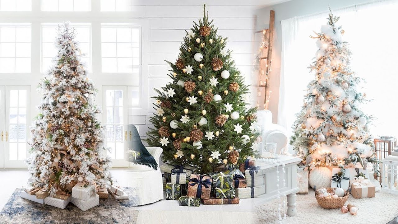 Alberi Di Natale Bellissimi.I Migliori Alberi Di Natale 2020 Link In Descrizione Youtube