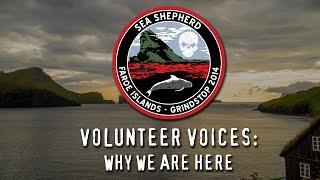 Operation GrindStop 2014: Volunteer Voices