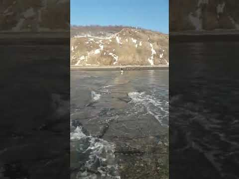 Жителей Александровск-Сахалинского района взбудоражил «обычный бенч»