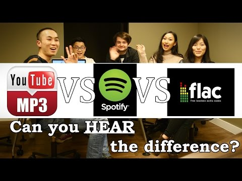 FLAC Vs Spotify Vs YouTube : HEARING Test Review!