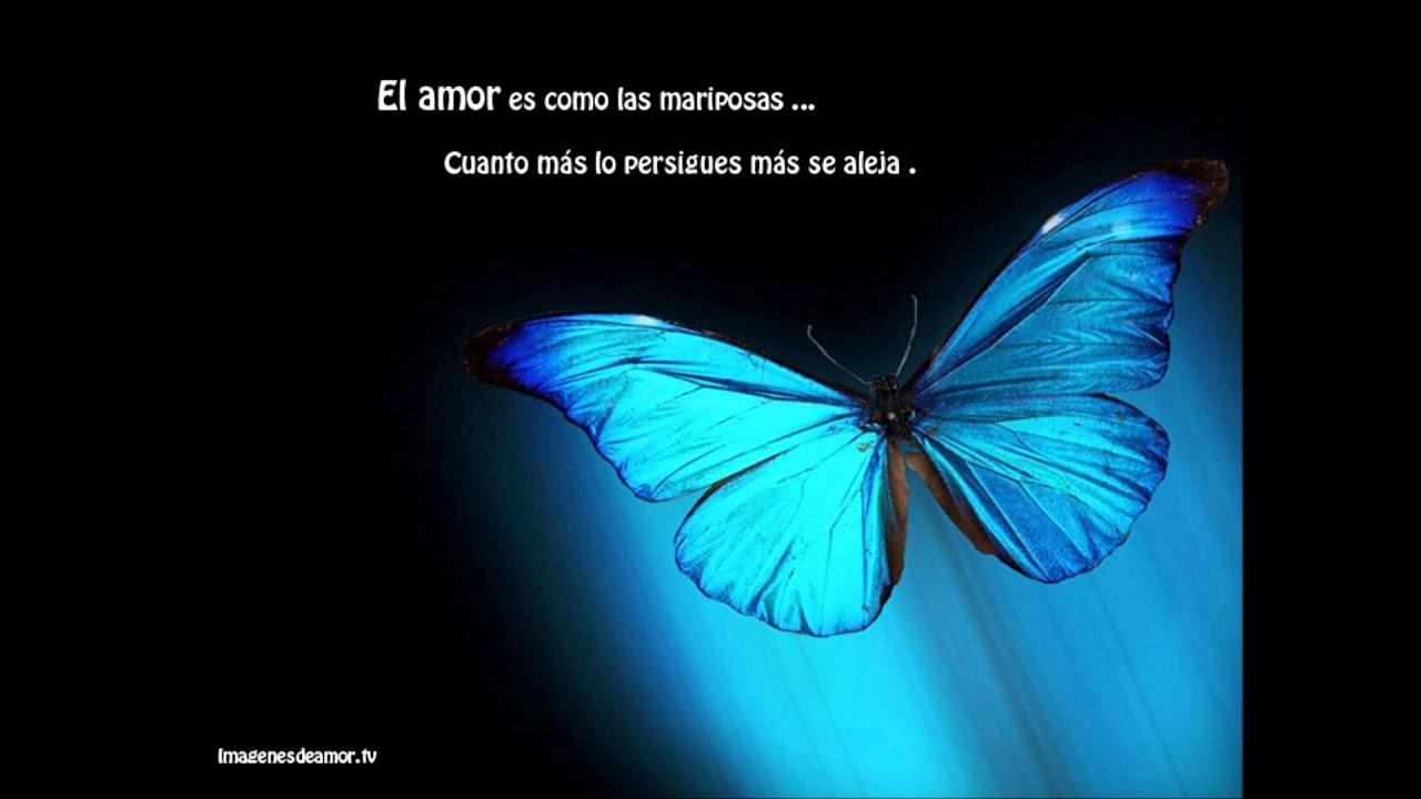 Fresco Imagenes De Mariposas Con Frases De Amor Mejor Casa Sobre