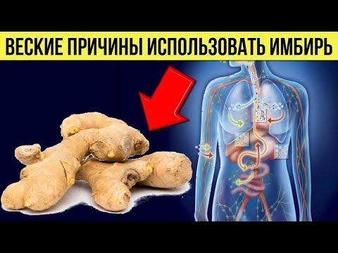 Вот Почему нужно использовать Имбирь Каждый день Польза корня имбиря для Здоровья организма