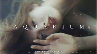 Hardwave / Witch House / Phonk Mix 'AQUARIUM'