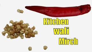 Kitchen Se Mirch Lo and Us K Seeds Lagao 100% Acha Result Pao