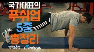 푸시업 5종 총정리 (with 국가대표 강성원) | 쉐어하우스