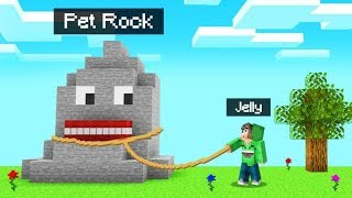 ROCKS Became PETS In MINECRAFT! (Weird)