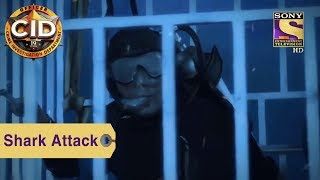 Your Favorite Character | A Shark Attacks Daya And Purvi | CID