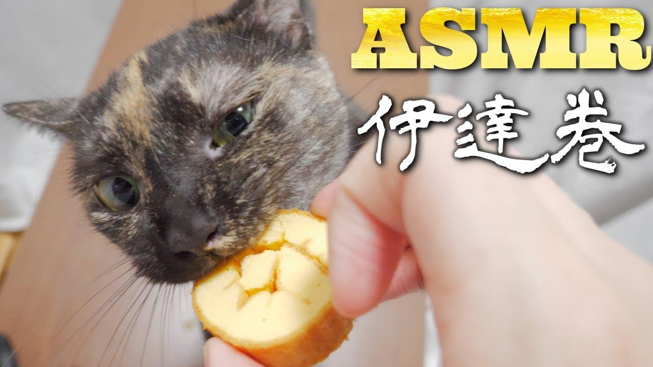 【ASMR】初めての伊達巻を唸りながら食べる猫の咀嚼音🐈🎧